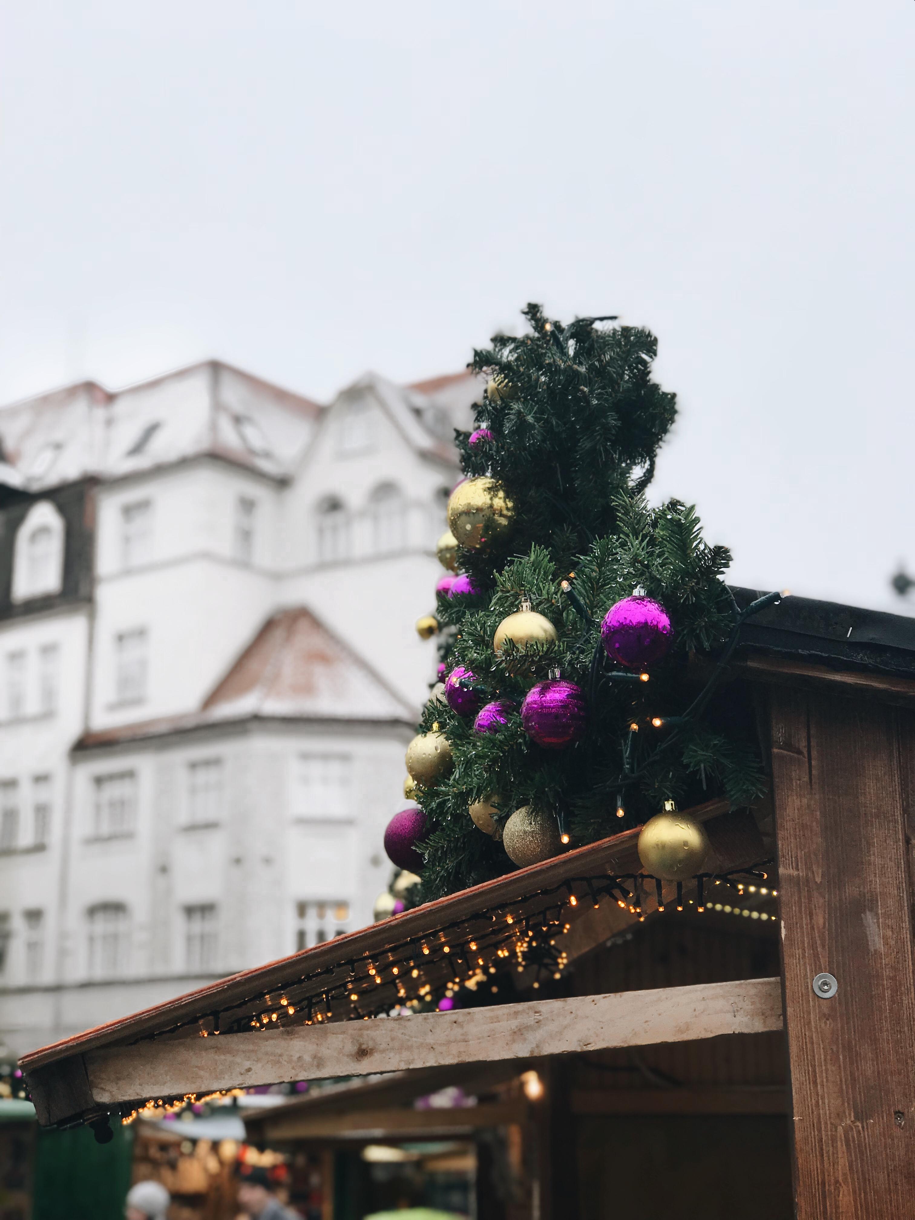 Tagesausflug – von Wien nach Brno / Brünn Travelguide